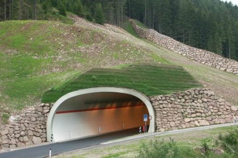 """TO' BENAE"" TUNNEL S.P. 215 (TN)"